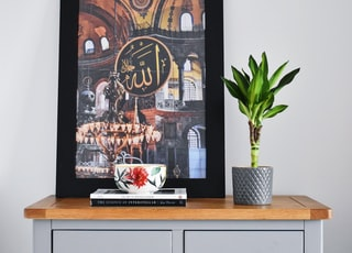 framed photo on wooden dresser with potted plant