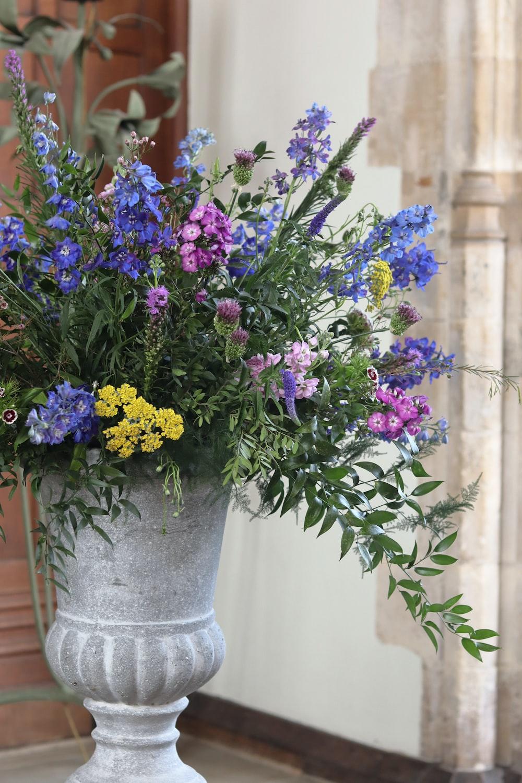 blue and purple-petaled flowers