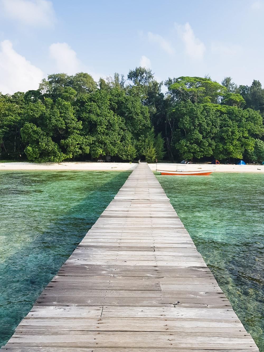 brown wooden dock on island