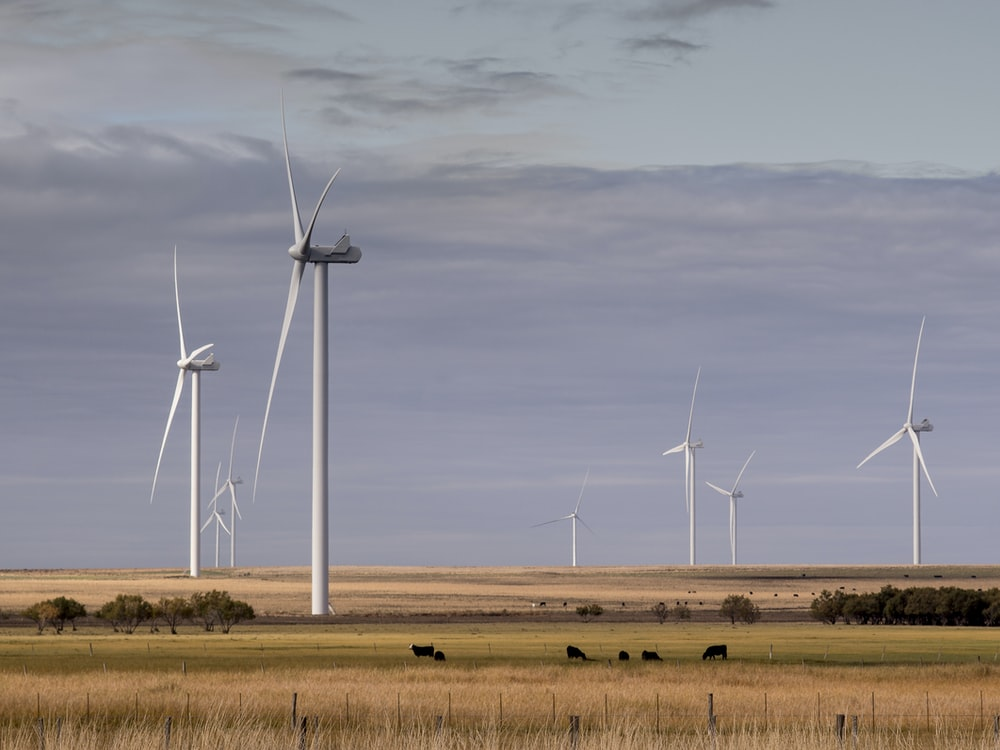 white windmills in green and brown valley