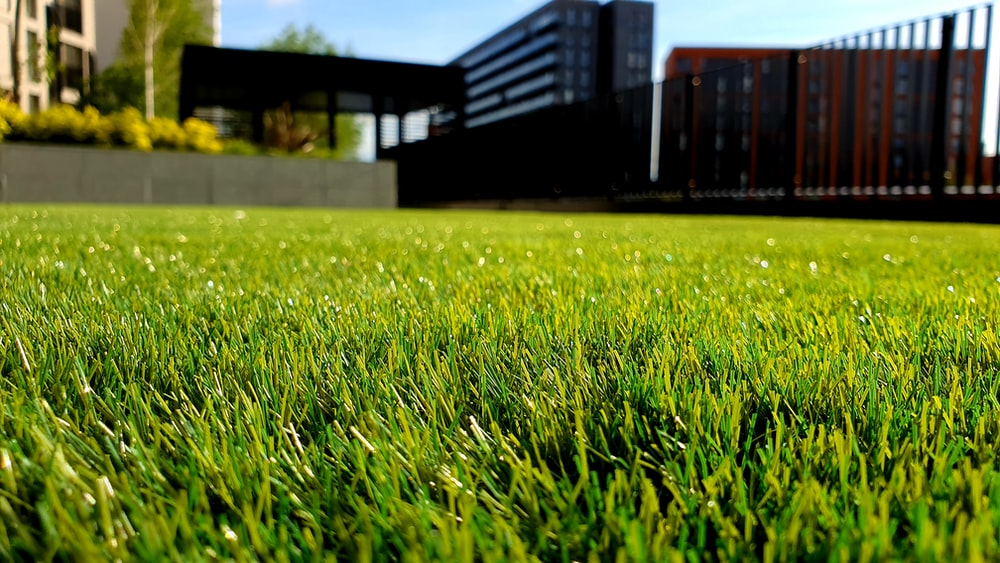 What is the cost of artificial grass lawns