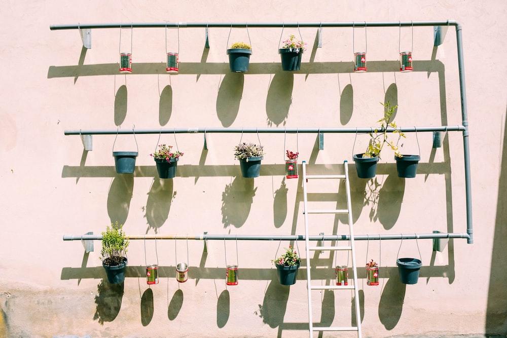 ladder leaning on flower pot's frame urban gardening jakarta