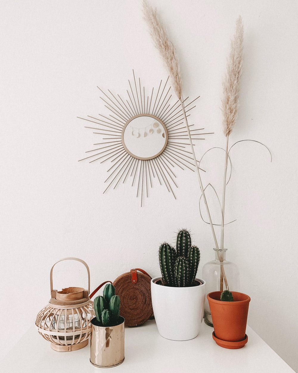 green cacti in pots on white surface