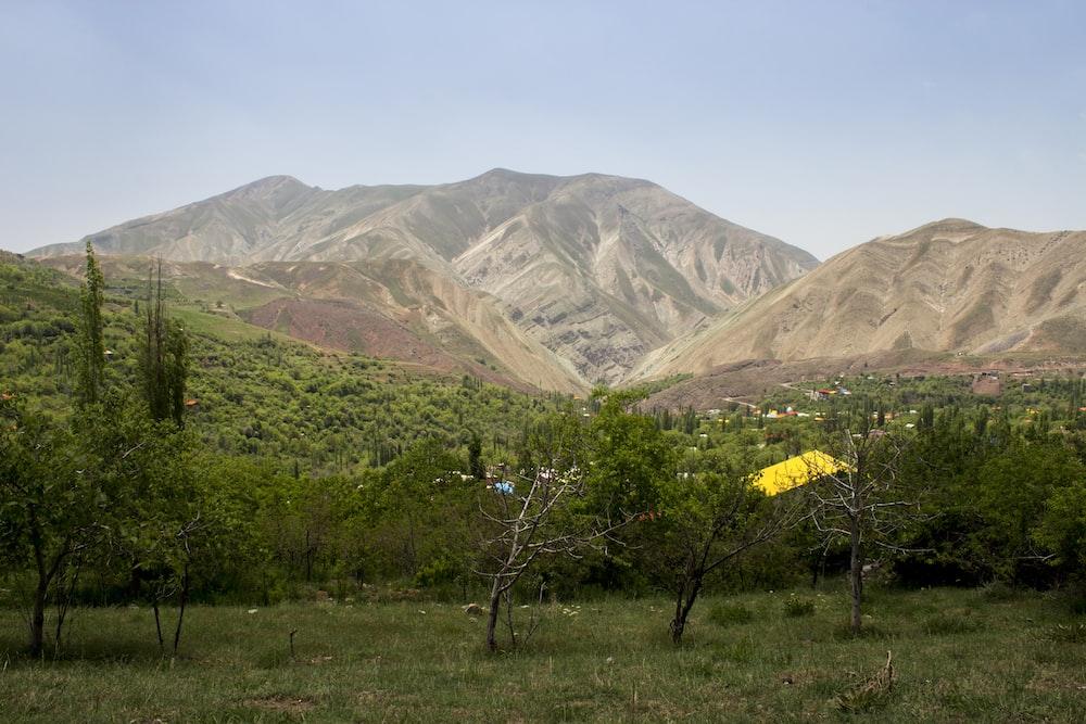 green trees across brown mountain photo