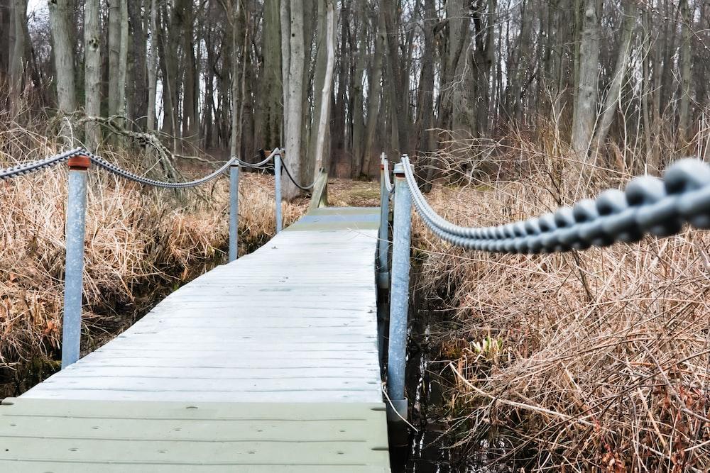 white wooden boardwalk