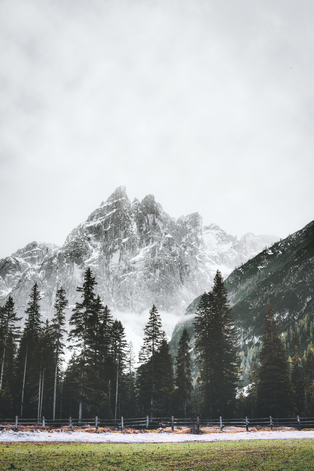 trees beside mountain covered with snow during daytime