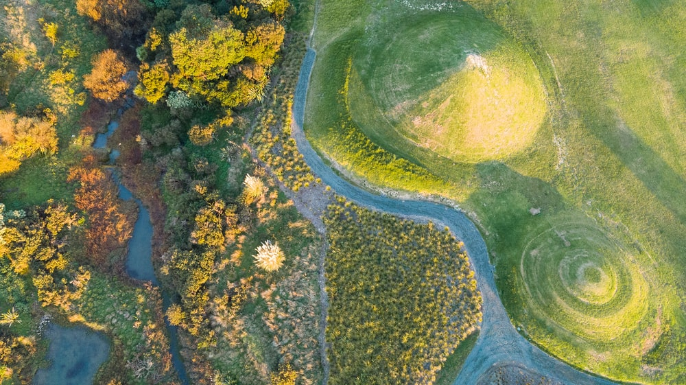 aerial photography of grass land