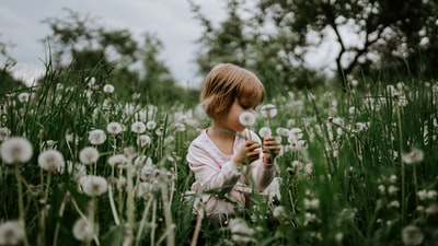 girl sitting on field of dandelions during day