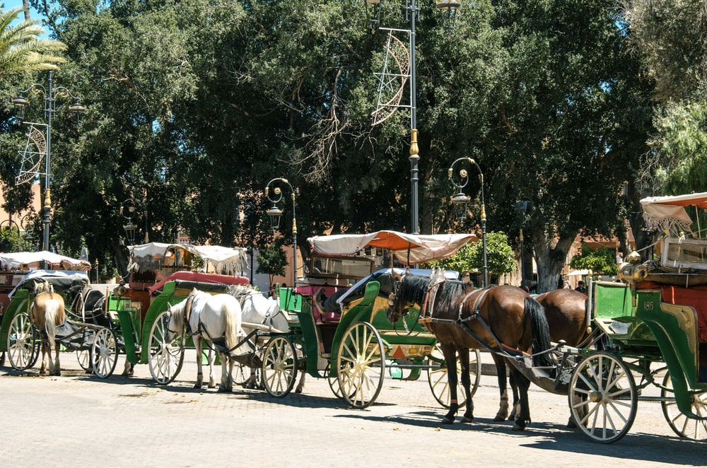 carriages waiting on queue