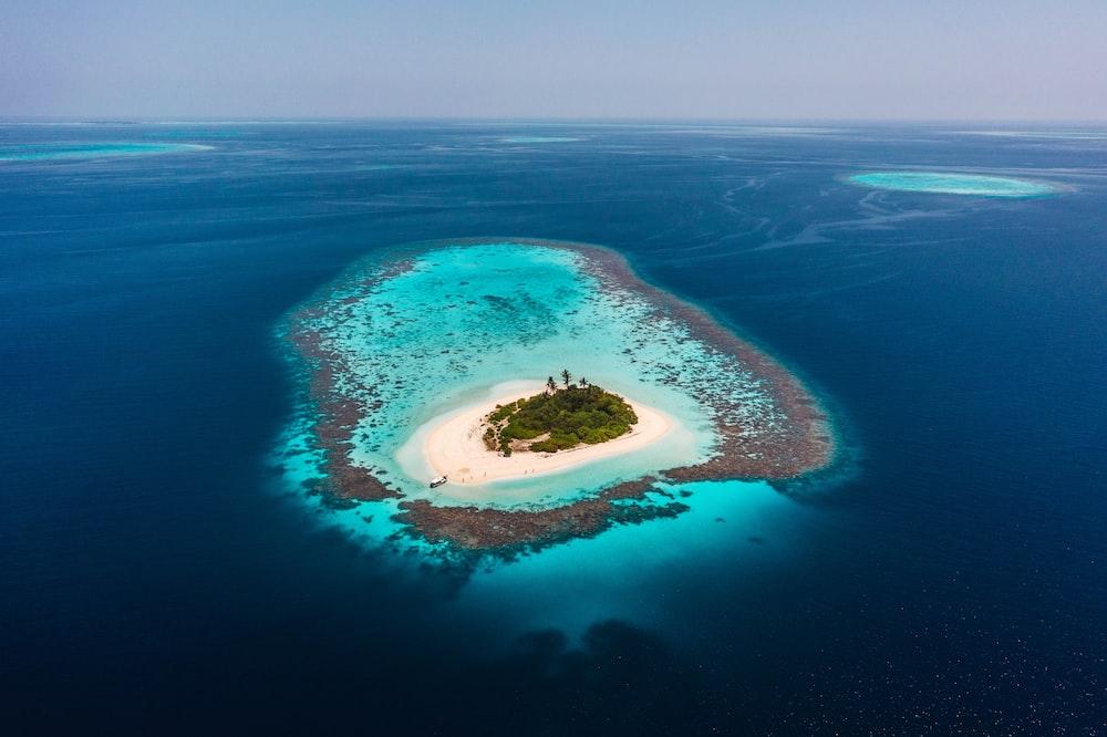 blue island