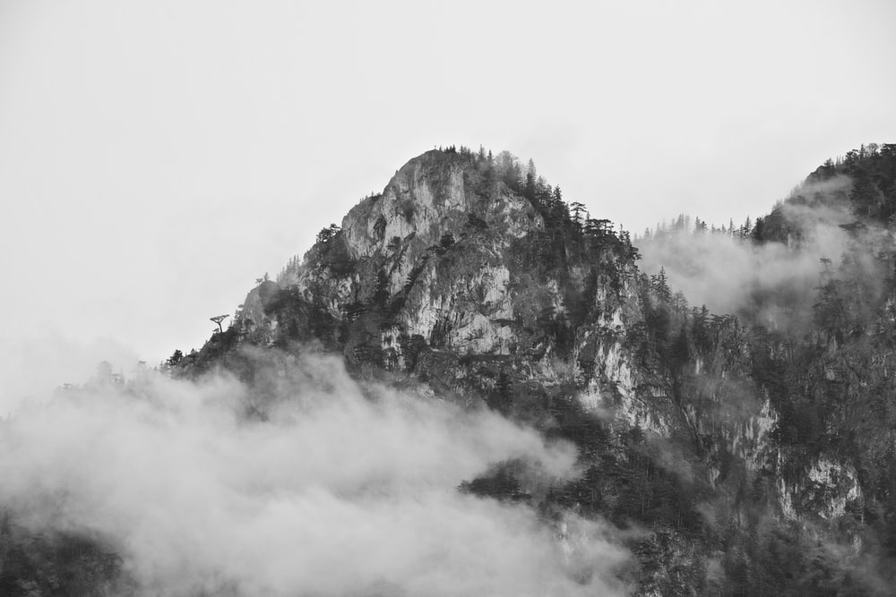 grayscale of mountain and trees