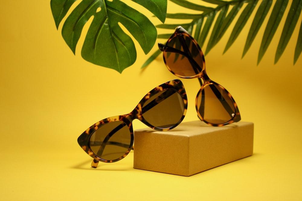 two tortoiseshell-framed Wayfarer-styled sunglasses with box