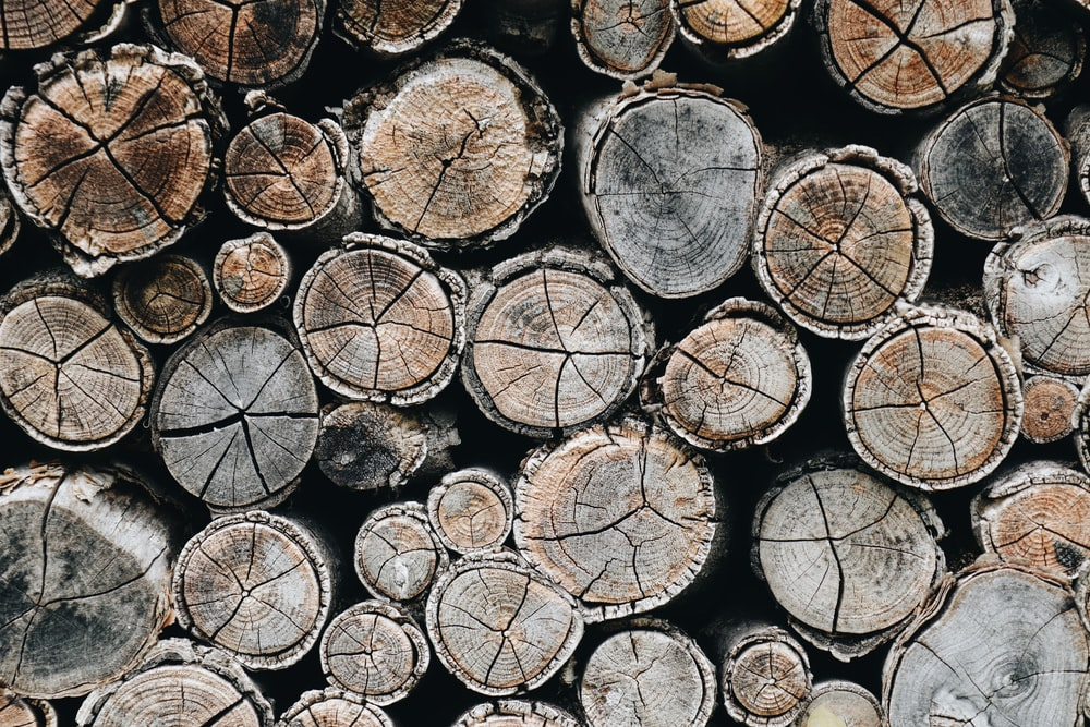 brown logs