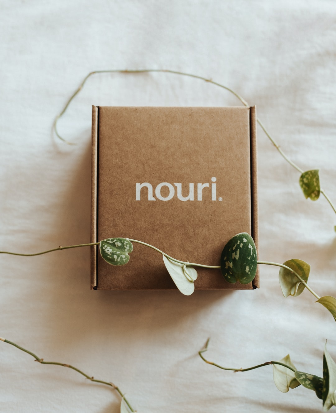 Package of Nouri, a proprietary probiotic and omega blend, on white comforter surrounded by beautiful vines of green leaves.