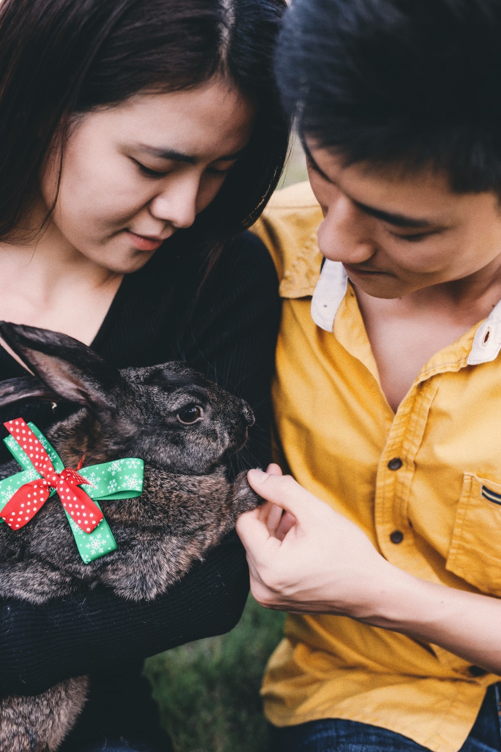 man and woman holding rabbit