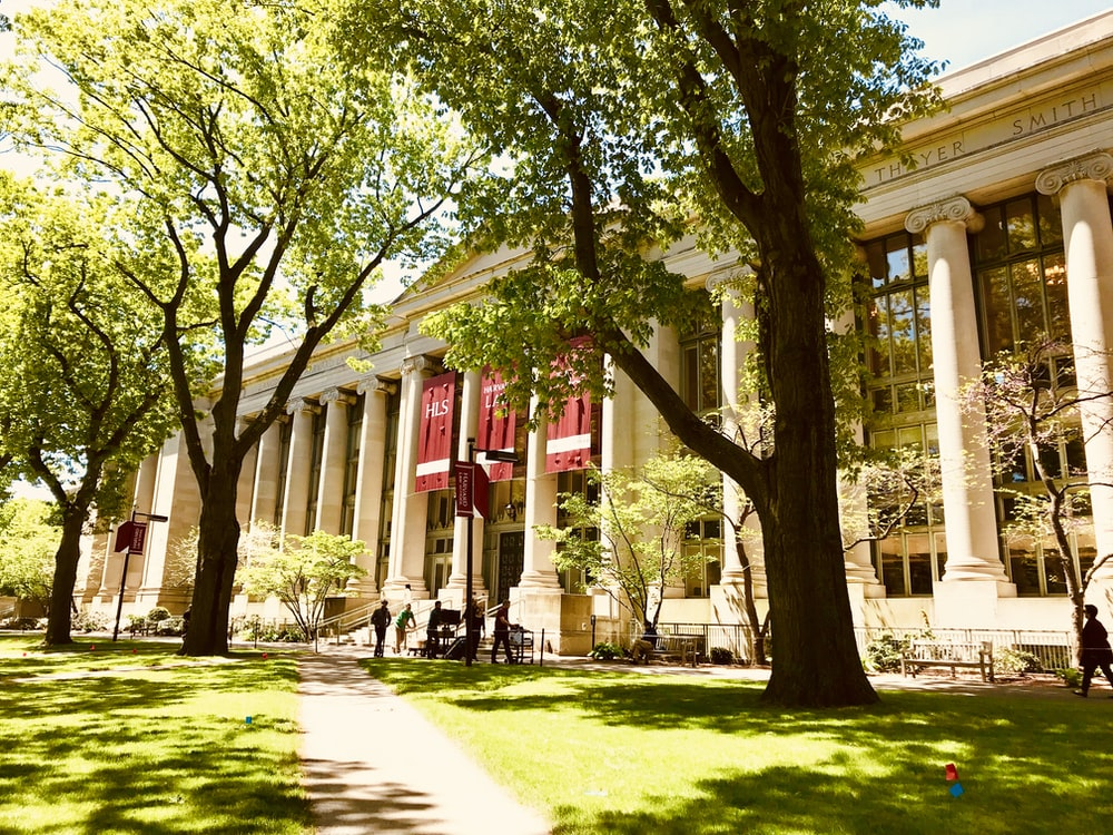 white university during daytime
