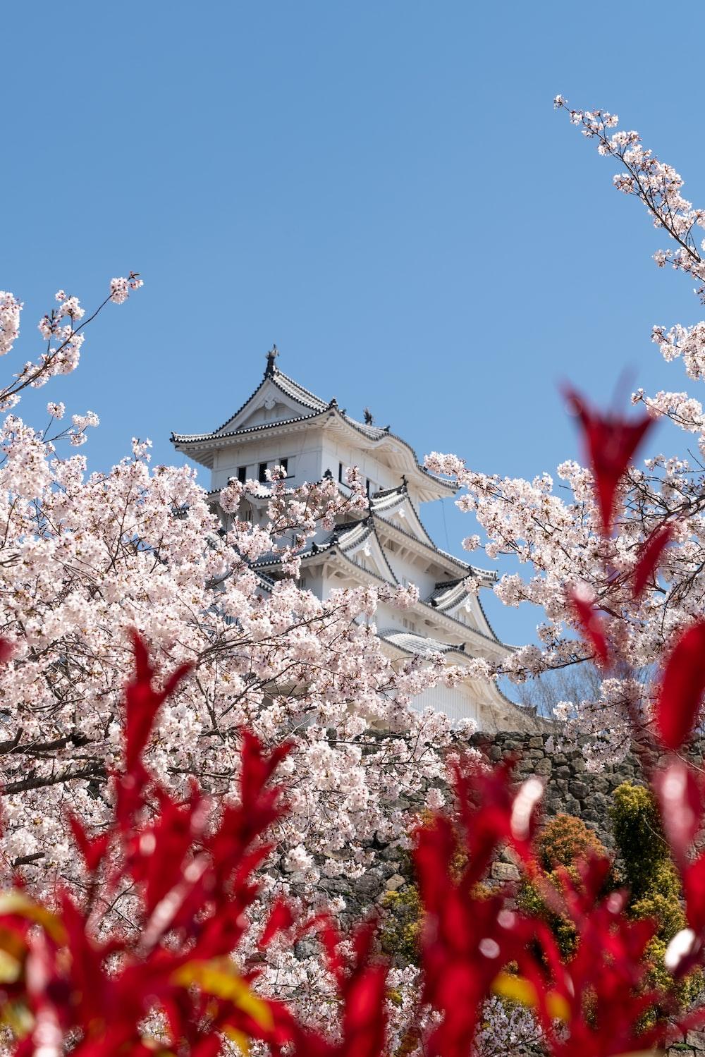white Himeji Castle at daytime