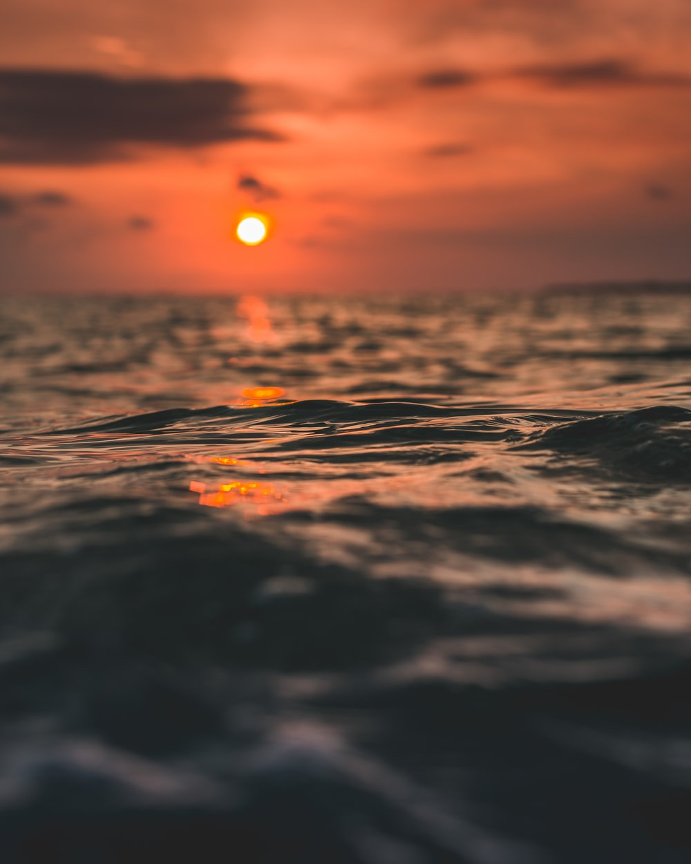 closeup photo of body of water during golden hour