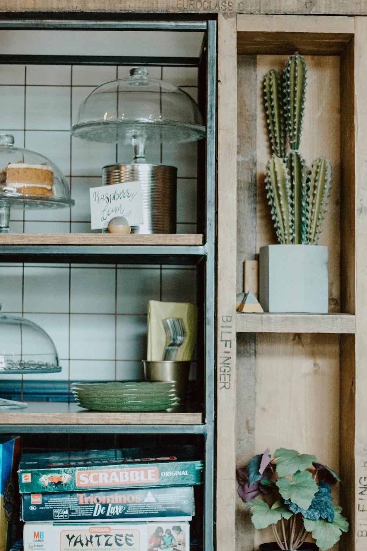 green cacti on brown shelf