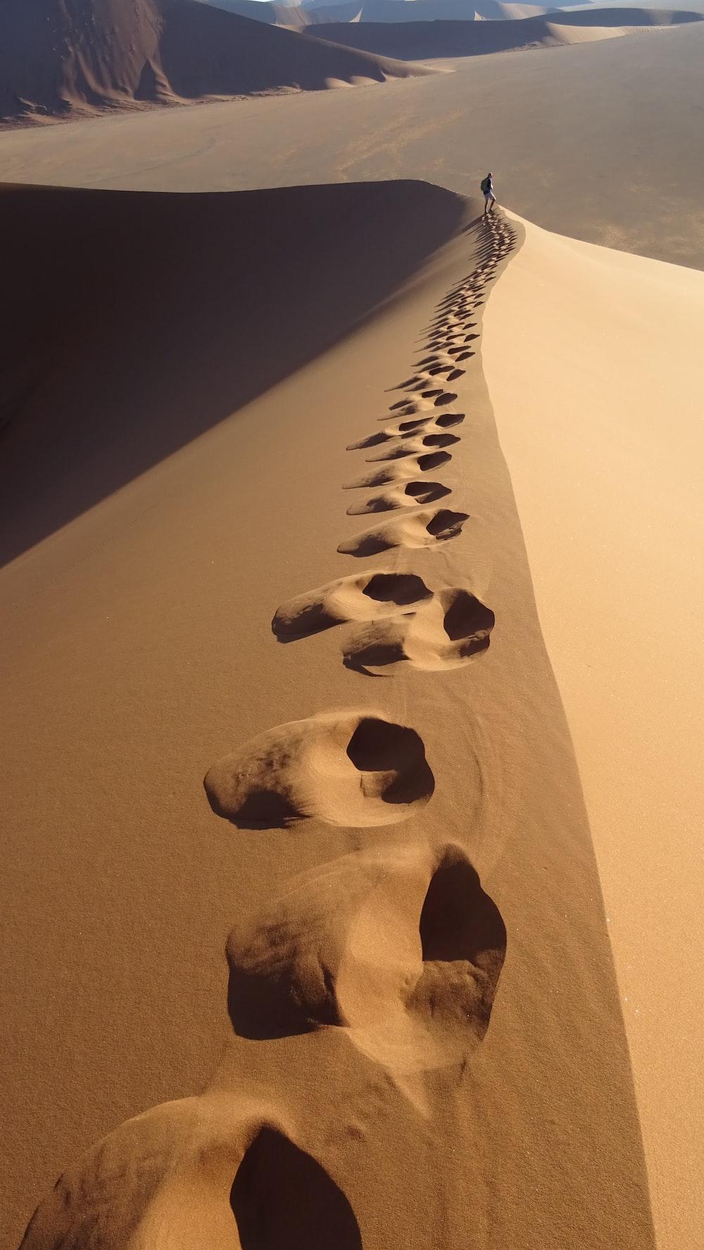 footsteps on desert