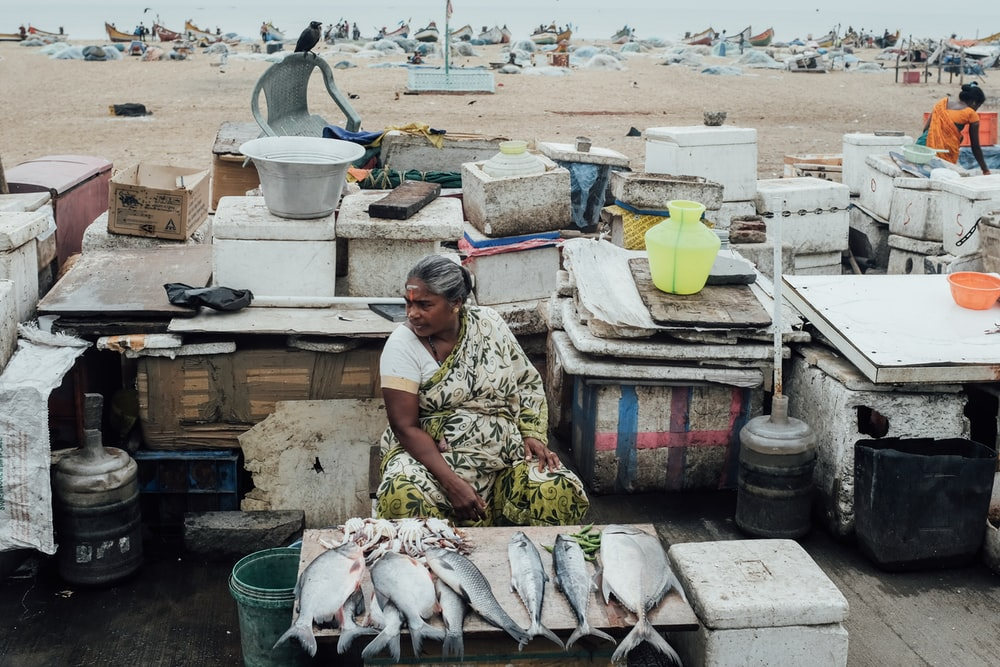 woman sitting on chair while selling fish