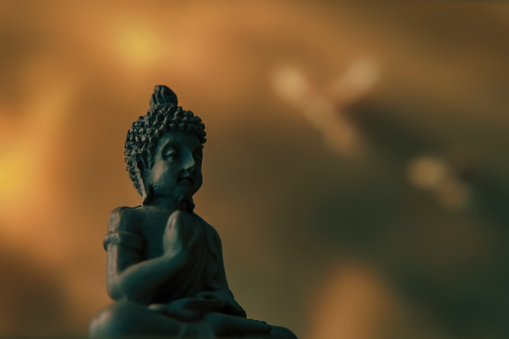 selective focus photography of buddha