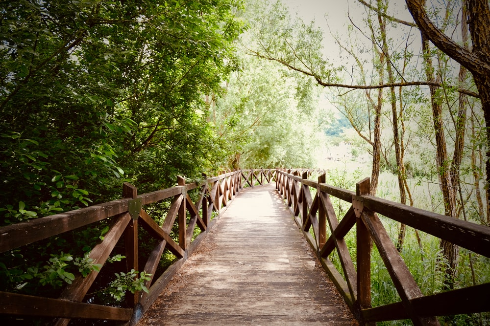 empty brown wooden footbridge
