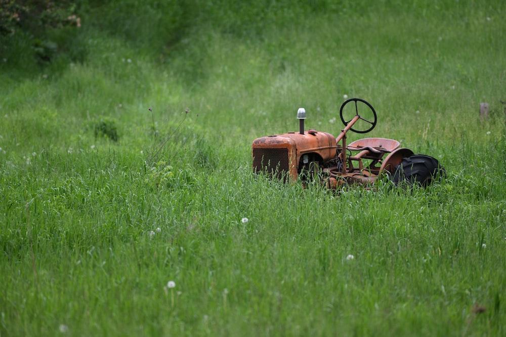 orange tractor on green grass field during daytime