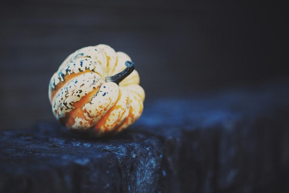 brown pumpkin photography