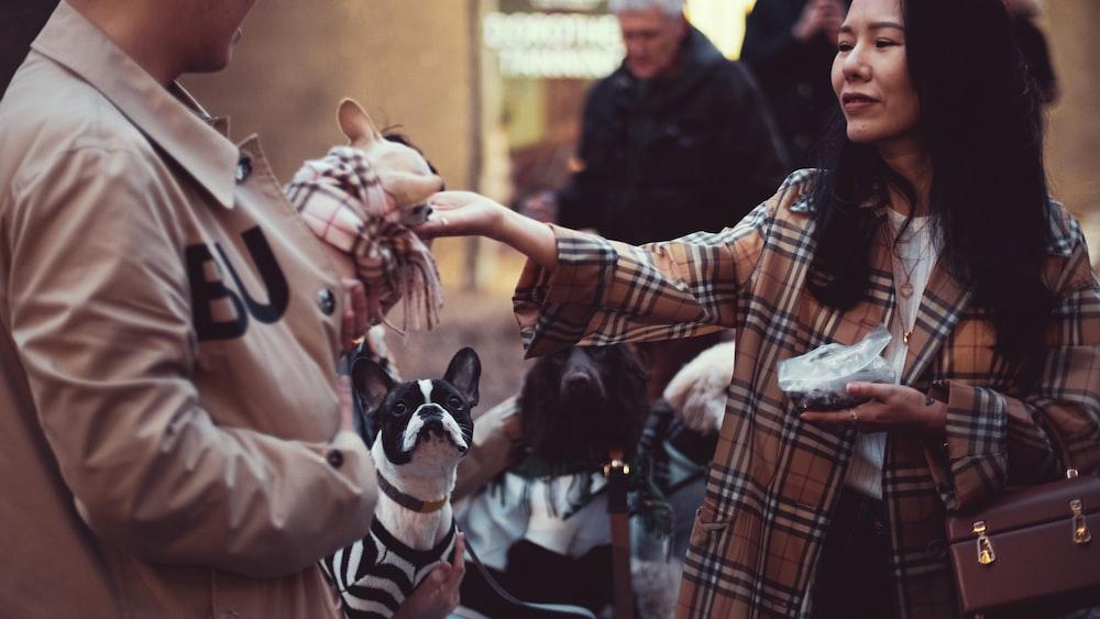 woman touching puppy