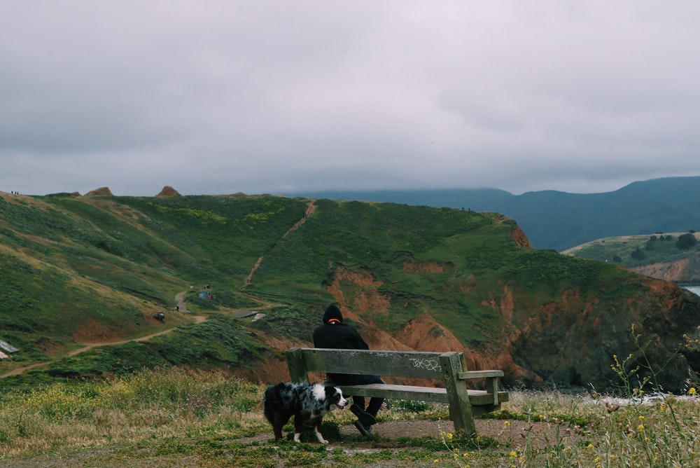 person sitting on brown wooden bench looking at mountain