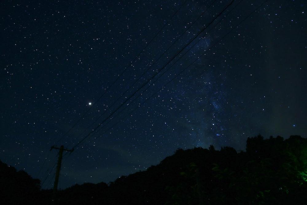 tree near hill at night