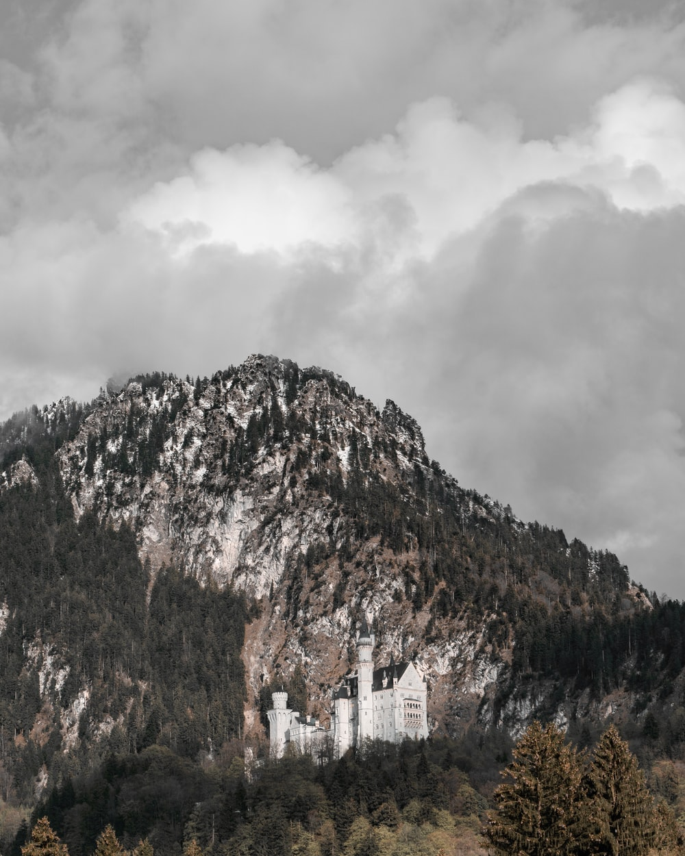 trees covered mountain on gray cloudy sky during daytime