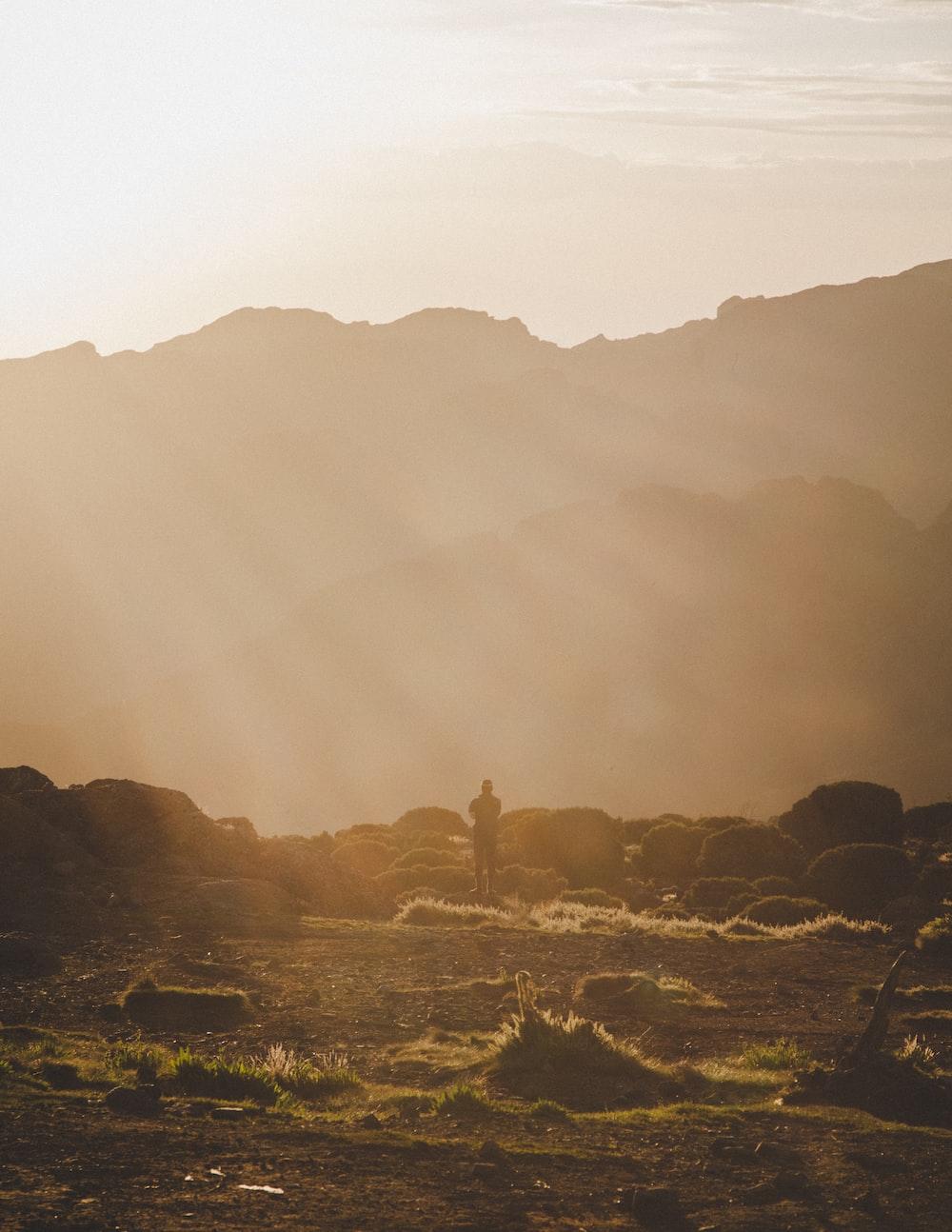 silhouette of man under sun rays