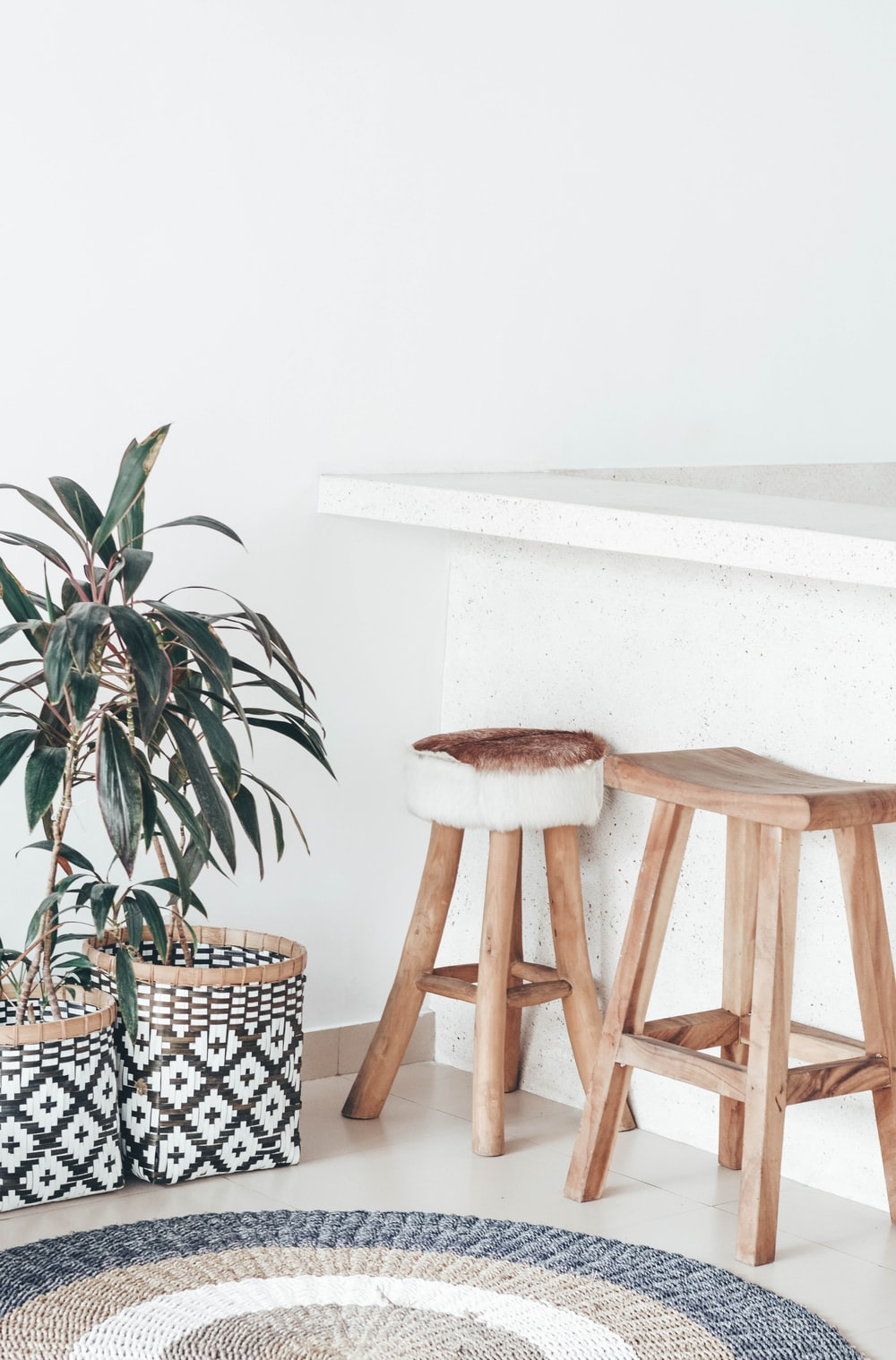 two brown stools near plant