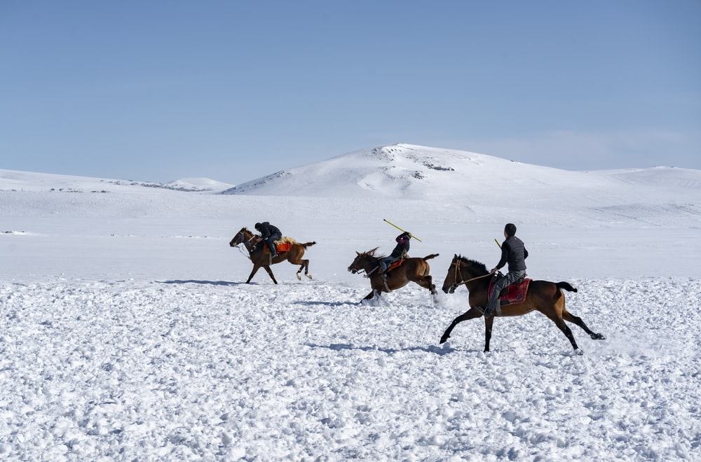 unknown persons riding on horses