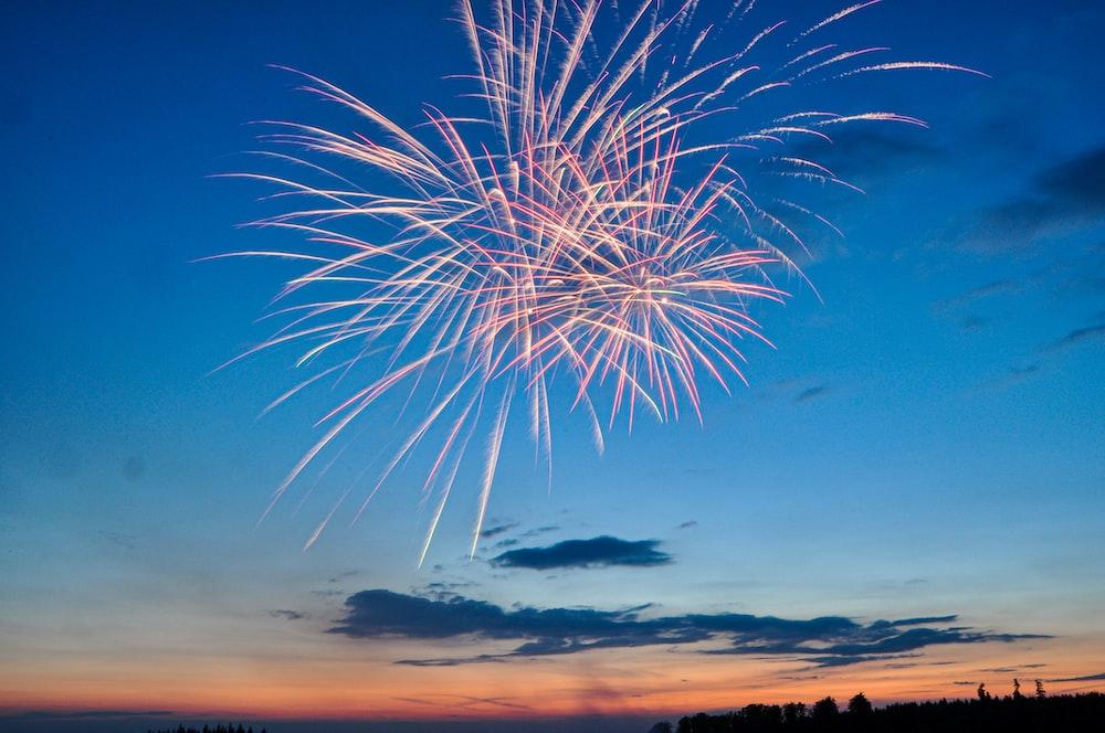 fireworks in clear dusk sky
