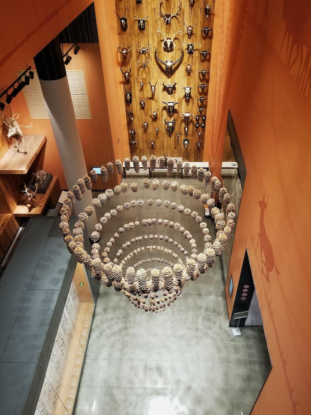 brown seashell chandelier