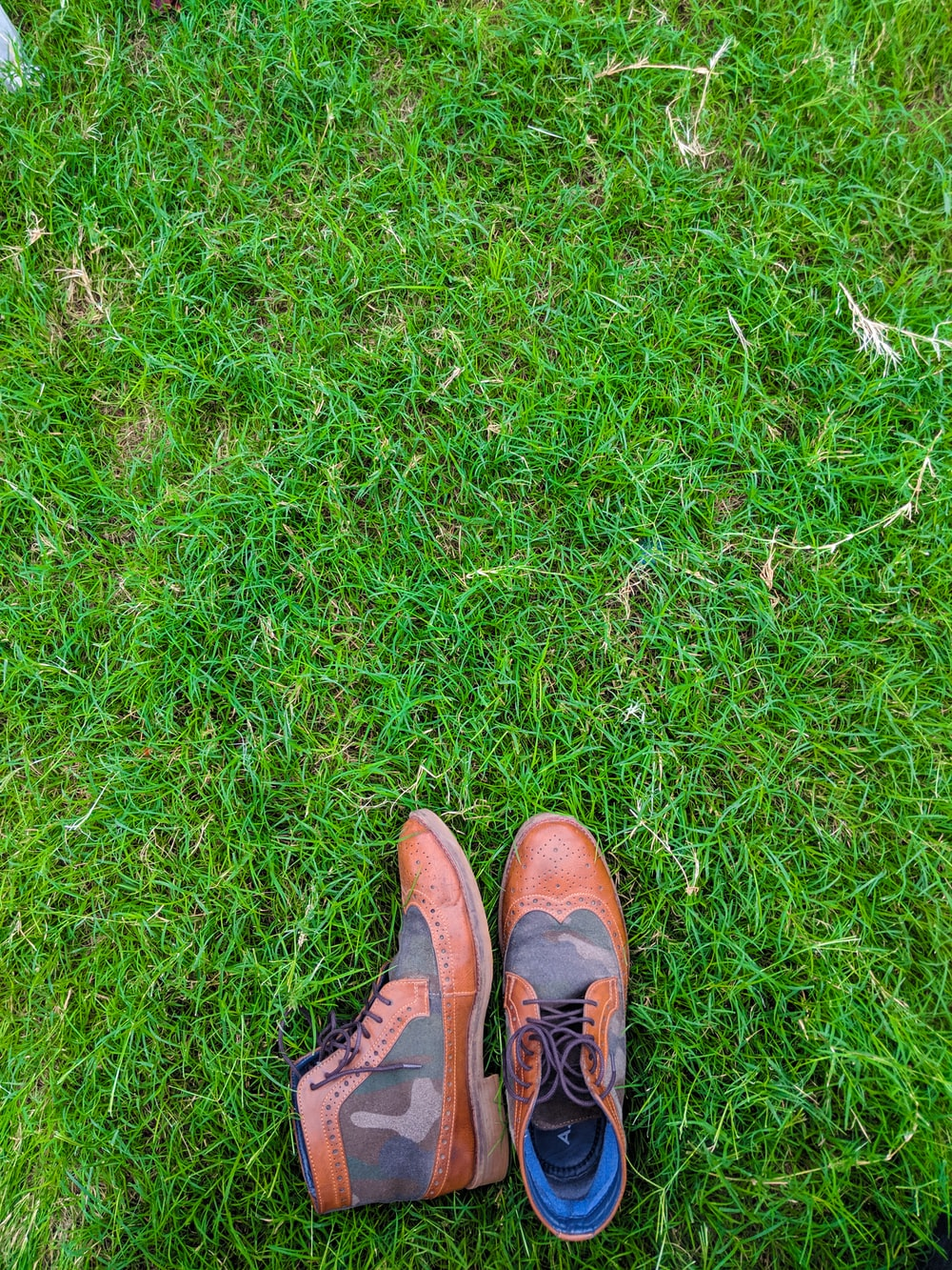 pair of brown-and-gray camouflage leather wing-tip boots on grass