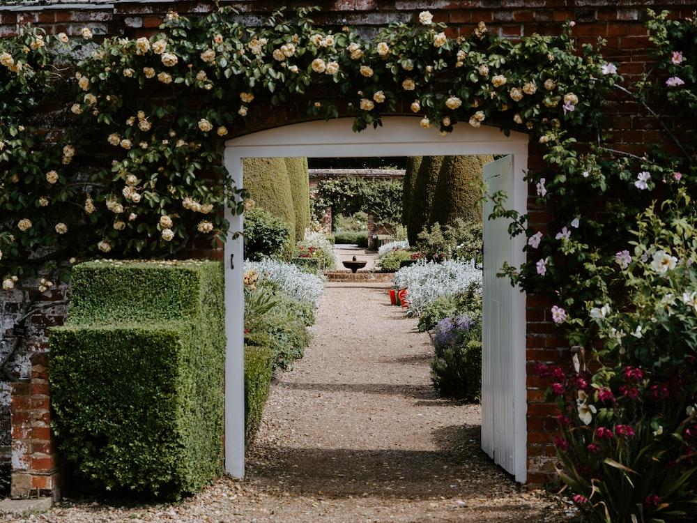 garden near gate