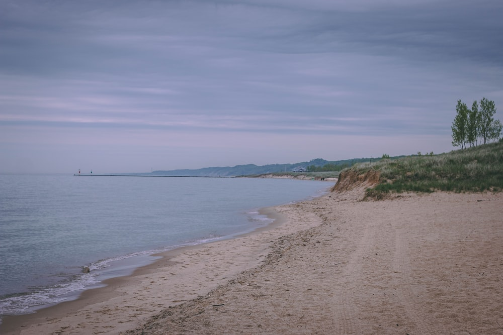 brown sand beside sea