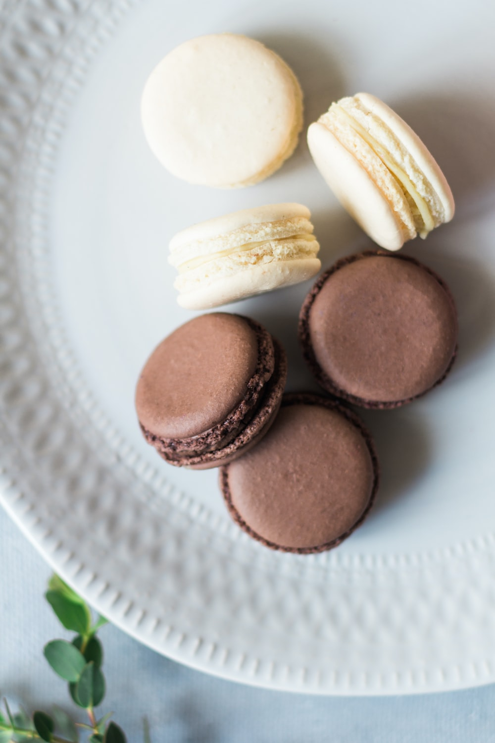 french macaron on plate