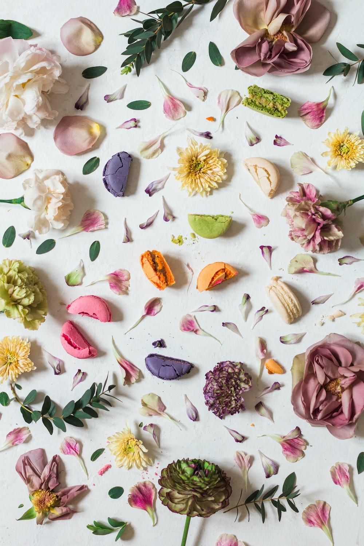 multicolored flower lot