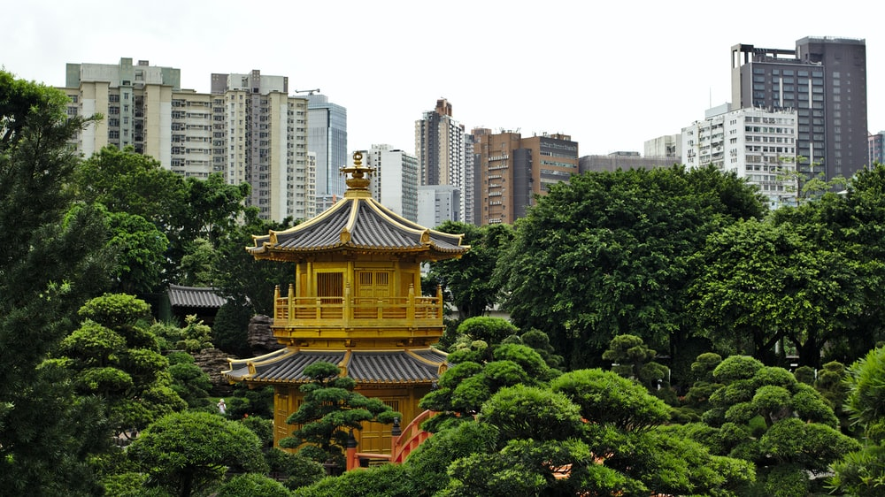 yellow and orange temple surrounded with trees