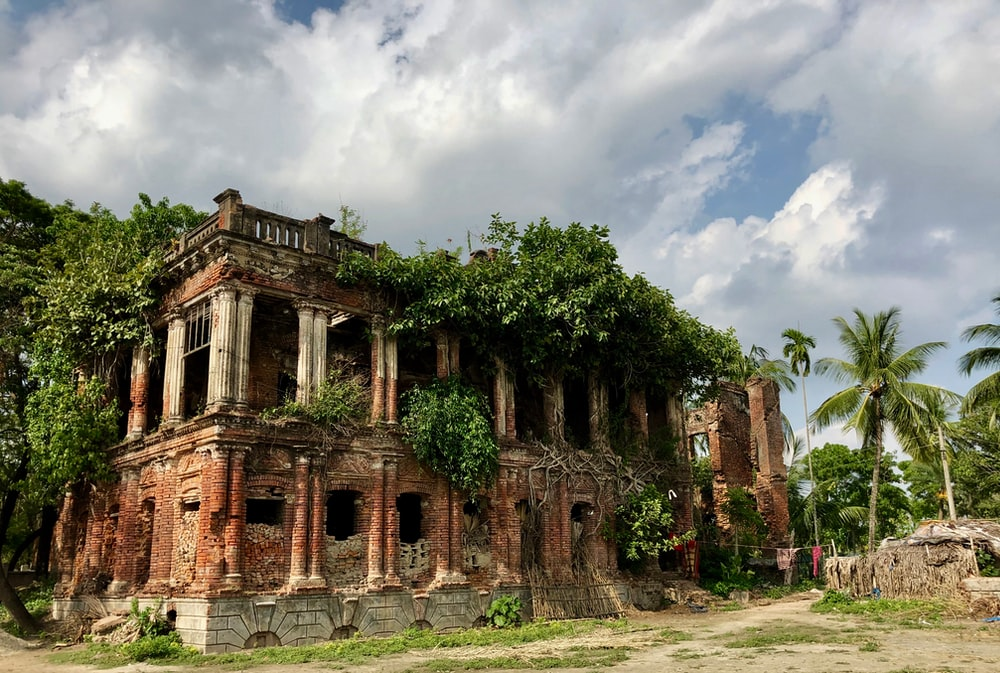 abandoned building surround with trees