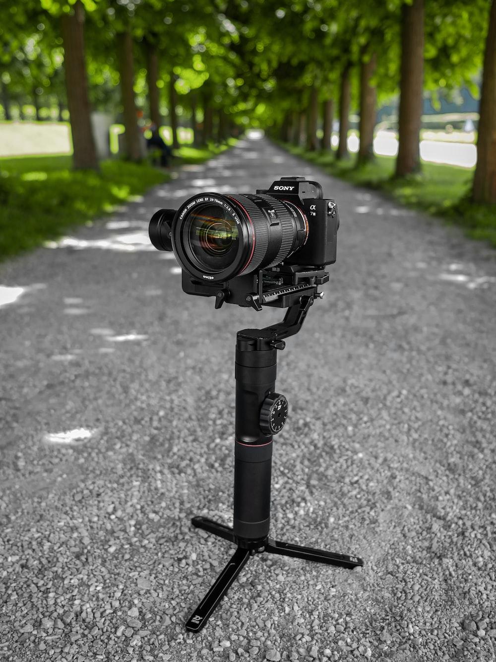 black DSLR camera on paved road