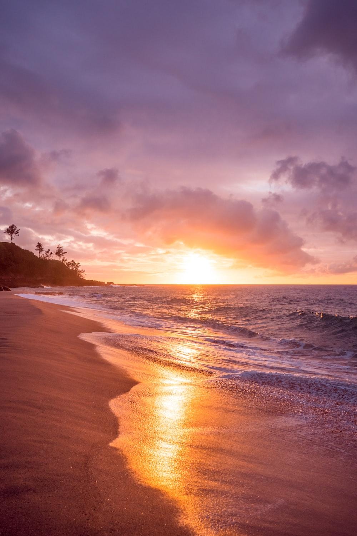 beach seashore during sunset