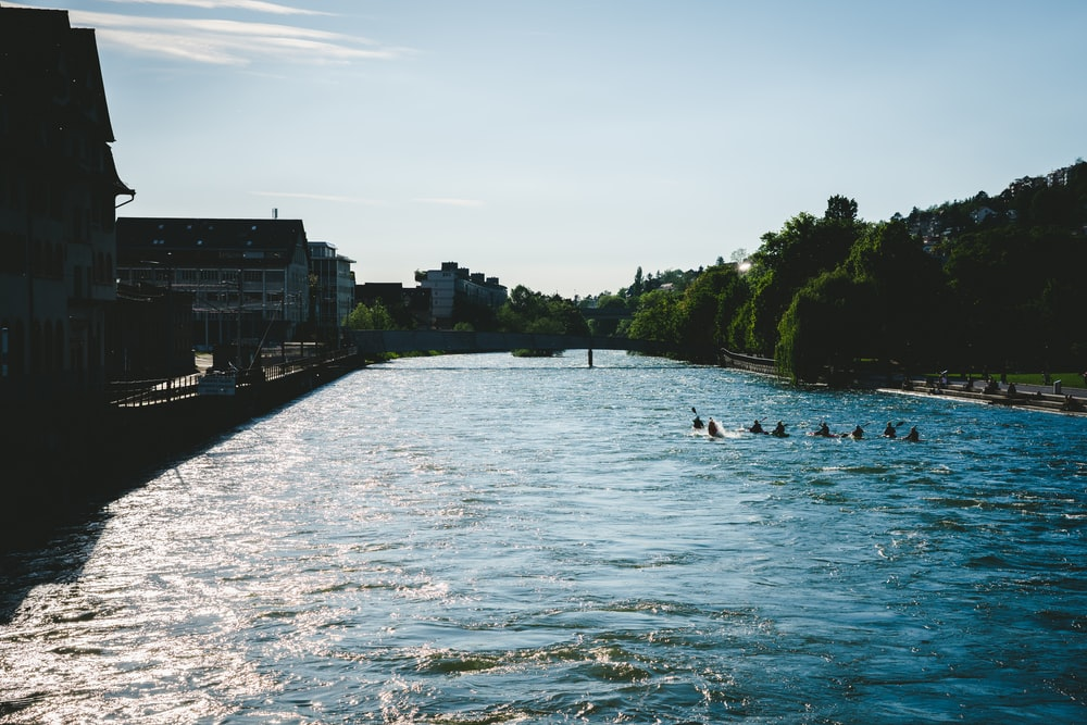 people swimming in river