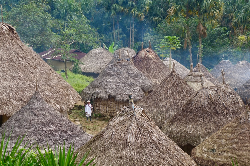 nipa huts between forest