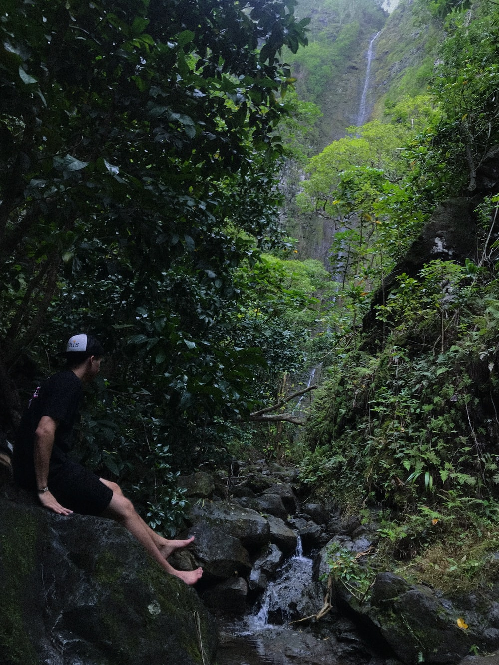 man sitting near waterfalls surrounded by plants